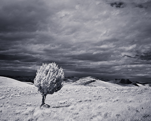 Owyhee Plateau, Leslie Gulch, Oregon
